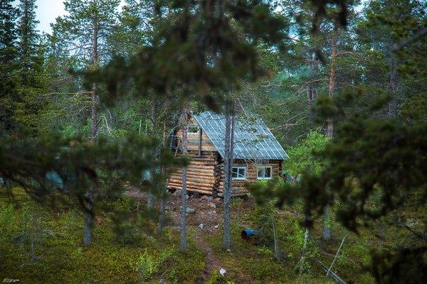 Отдых у лесного озера фотография, мурманская область, Собака, хаски, рыбалка, отдых, длиннопост