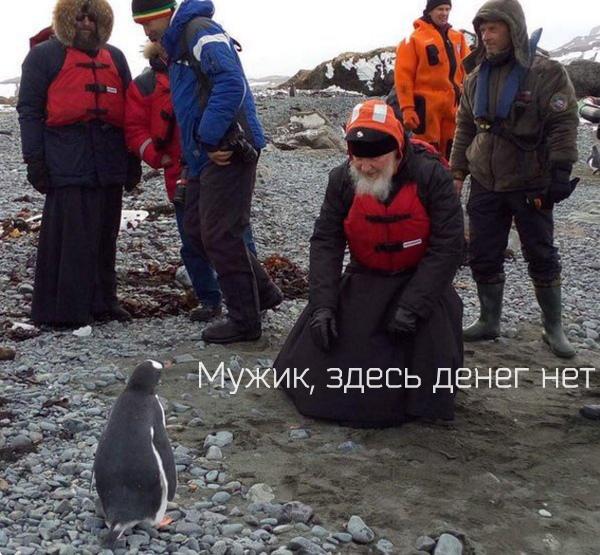 Кирил и пингвин