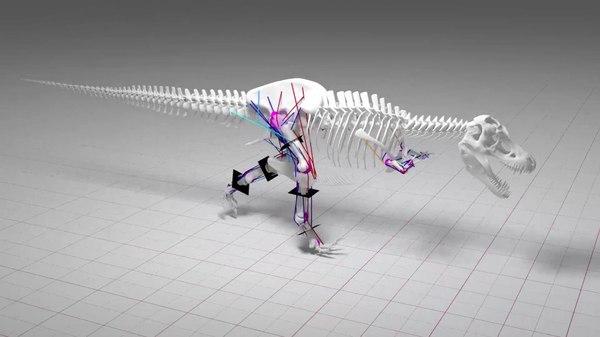 Тираннозавр рекс не мог бегать палеонтология, динозавры, новости, Копипаста, видео, длиннопост