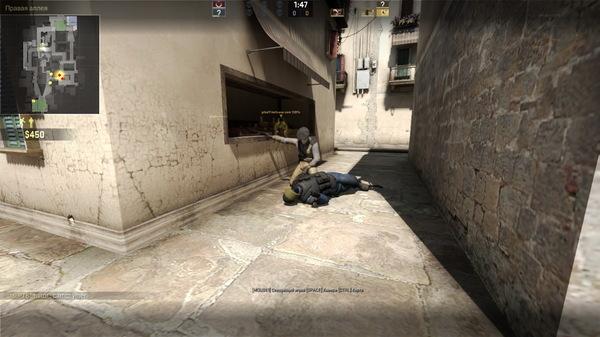 Живописная смерть в CS:GO скриншот, скорбь, cs:GO