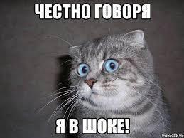 А ну, пошла отсюда! Кот, Смешное, Кошка и доктор, Реальная история из жизни, Забавное, Текст