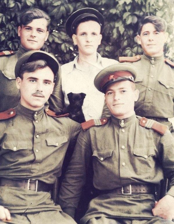 Охотники на бандеровцев. ссср, бандеровцы, армия, Реколор