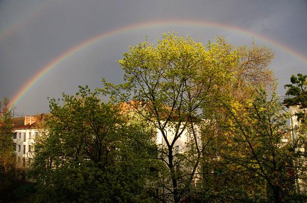 Купол радуги