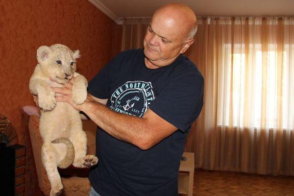 В Новошахтинске родились два белых львенка и три олененка. Новошахтинский зоопарк, Животные, Вопросы остаются