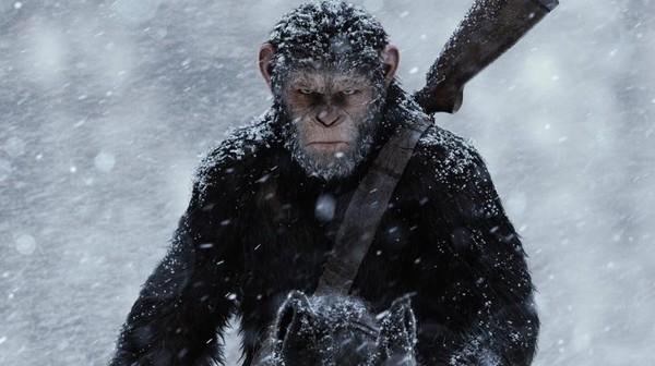 Морозостойкие шимпанзе: 10 вопросов к создателям «Планеты обезьян» Антропогенез, антропогенезру, Планета обезьян: Война, научпоп, рецензия, Александр Соколов, приматы, длиннопост