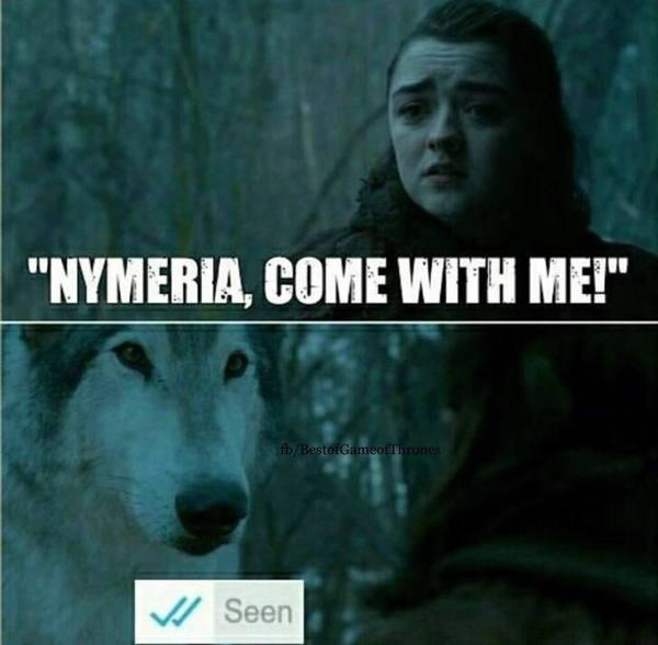 Встреча Арьи и Нимерии в соцсетях