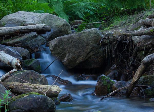 Наедине с природой Широкий Дол, фотография, горный ручей, горный туризм, лес, ручей, Природа, красота природы