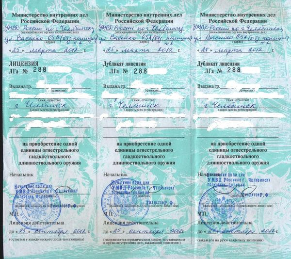 Как стать владельцем огнестрела в России Длиннопост, оружие, получение лицензии, лицензия на оружие, самооборона, FAQ