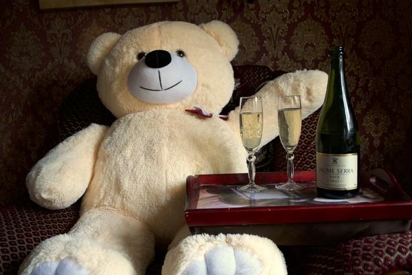 Шампусика? Игрушки, Шампанское, Медведь