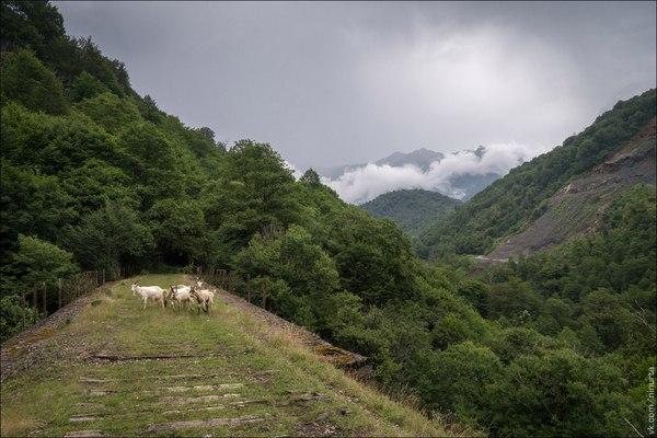 Акармара. Лето 2016. абхазия, Абхазия отдых, Акармара, почти город призрак, сталк, урбанфото, постапокалипсис, заросли, видео, длиннопост
