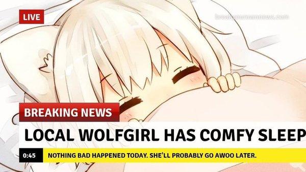 Срочные новости! девочка-волк, аниме, аниме-новости, Няша