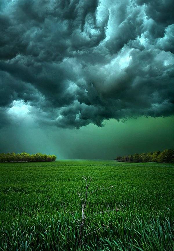 Перед бурей.