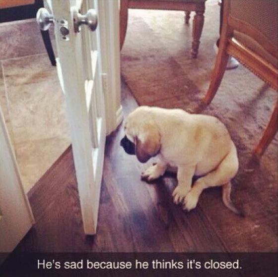 Он расстроен, потому что думает, что закрыто..