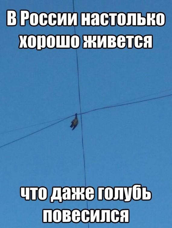 Эхх... Россия матушка