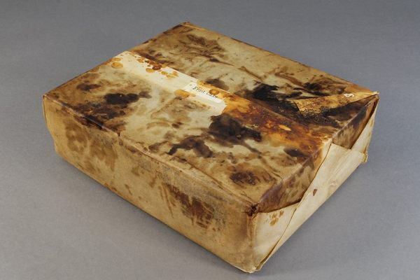 В Антарктиде нашли столетний пирог Пирог, Кекс, Антарктида, длиннопост