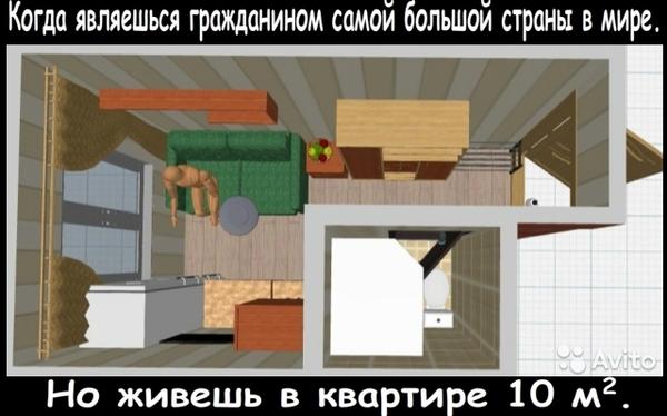 Квартира мечты. Авито, объявление, недвижимость