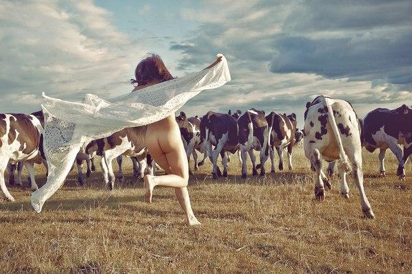 Среди коров я своя!