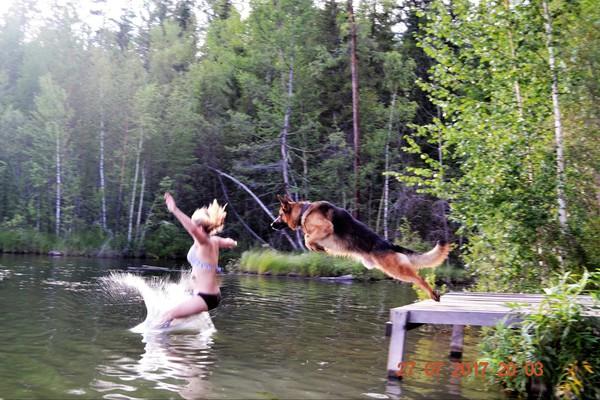 Отдых кинолога купание, Озеро, Собака