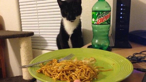 deadly noodle