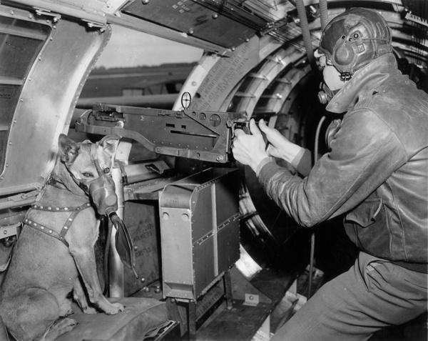 История Второй Мировой Войны в фотографиях #69 вторая мировая война, история, Подборка, событие, длиннопост