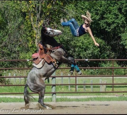 Сегодня выездка не задалась Лошадь, Животные, Выездка лошади, девушки, Падение