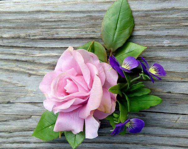 Заколка-брошь с розой и анютиными глазками Полимерная глина, холодный фарфор, рукоделие без процесса, роза, анютины глазки, заколка, брошь, длиннопост
