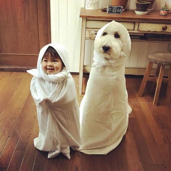 Мейм и Рику =) пудель, собака, девочка, Япония, длиннопост