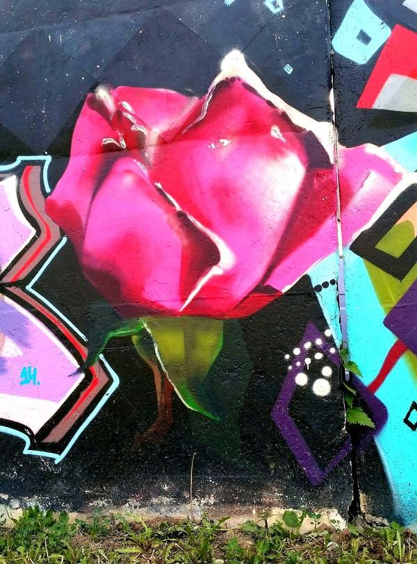 Граффити (так же как и стрит-арт) должны украшать стены, а не уродовать их. №22 граффити, стрит-арт, уличная живопись, Екатеринбург, Москва, вторник, длиннопост