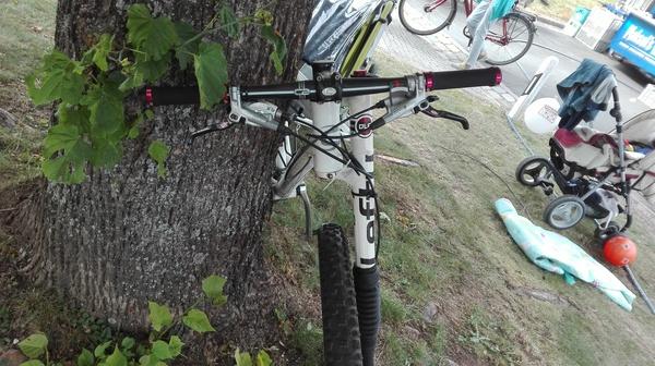 Неожиданно велосипед, вилка, сюрприз, кретинизм, Германия, длиннопост