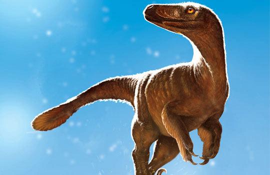 В Канаде нашли самого большого троодонта в мире наука, палеонтология, копипаста, динозавры, Эволюция, длиннопост