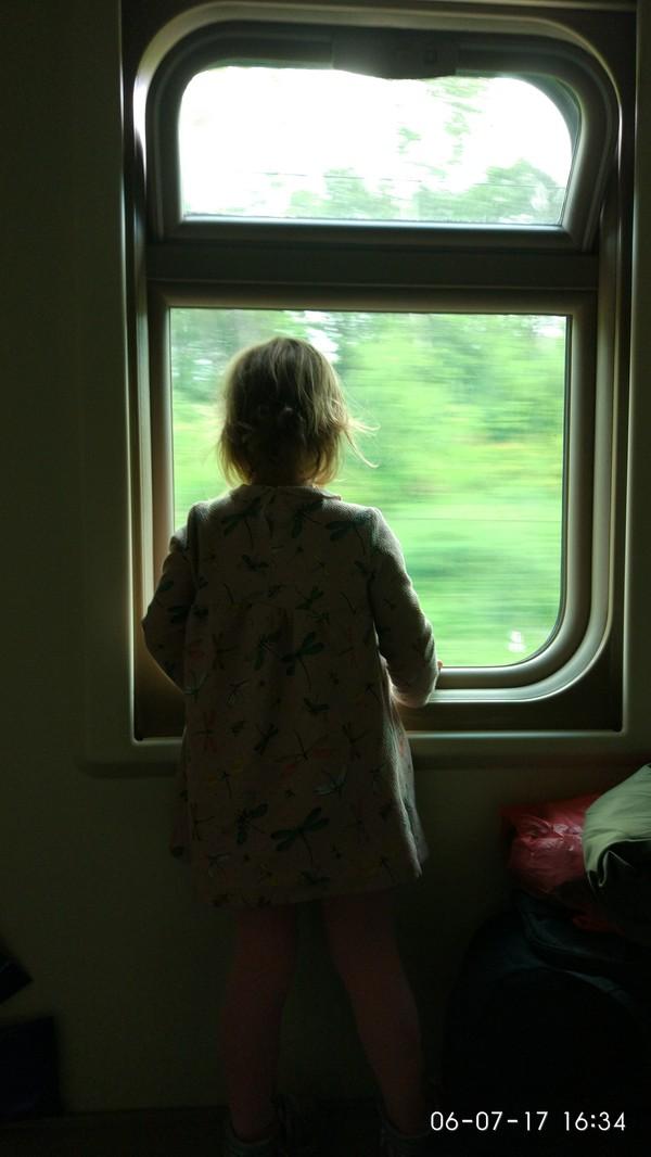Поезд Москва-Брянск. Дочь, поезд, РЖД, длиннопост