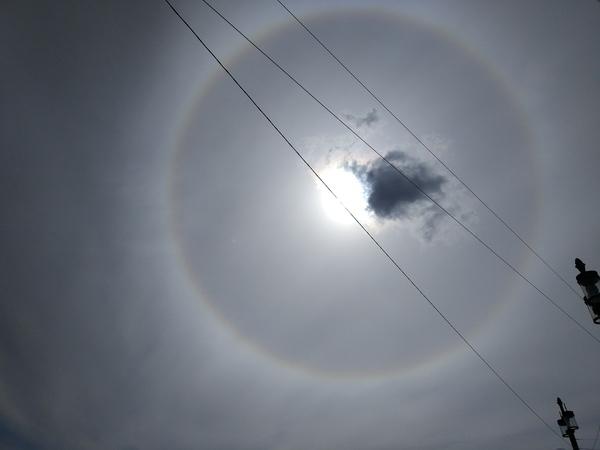 Интересный круг вокруг солнца в СПб Солнце, облака, Санкт-Петербург
