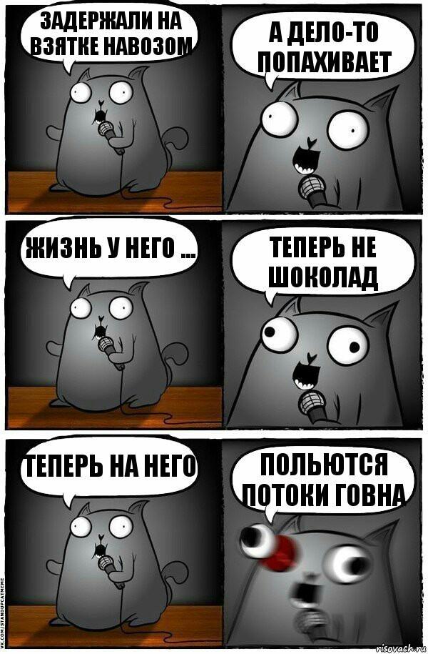 Дурно пахнущее дело Взятка, Попался!, Стендап-Кот
