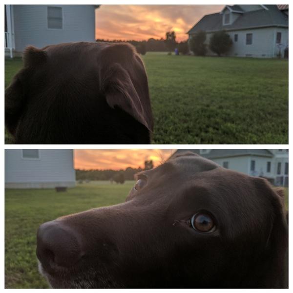 С лучшей подругой наблюдали закат, и я увидел, что она гораздо красивее)
