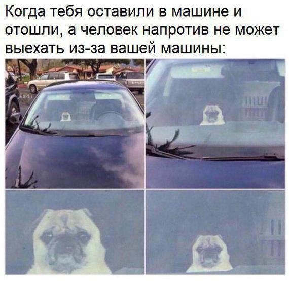Когда тебя оставили в машине и отошли