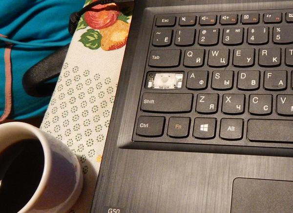 Компьютерный домовенок. домовенок кузя, ноутбук