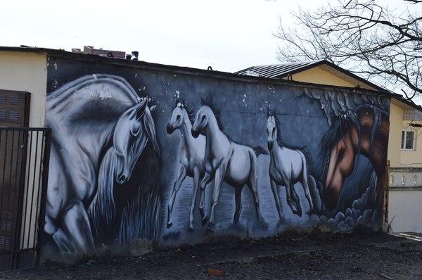 Поездка к подруге и ее кобыле в кск созидатель) лошадь, Собака, пони, кот, длиннопост