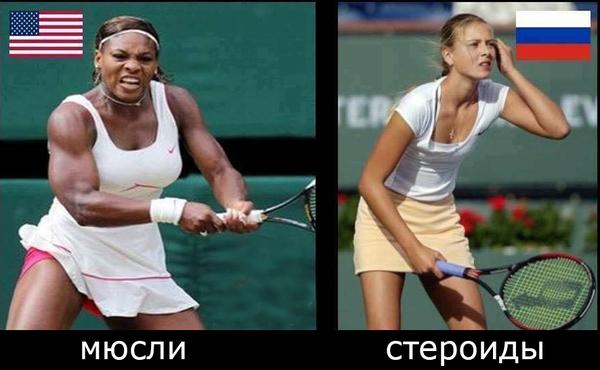 """Серена Уильямс: """"Я должна работать в два раза больше Шараповой. Это потому, что я чёрная?"""" серена уильямс, Мария Шарапова, теннис, спорт"""
