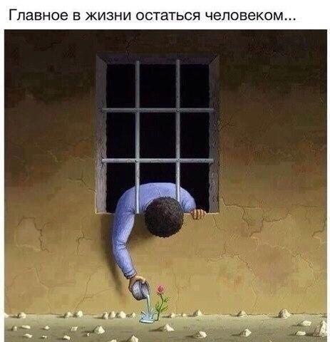 Фото реальная история из жизни, жизнь, длиннопост