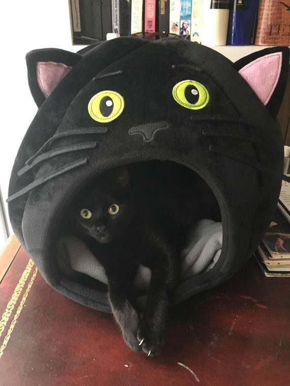 Новый домик для кота.