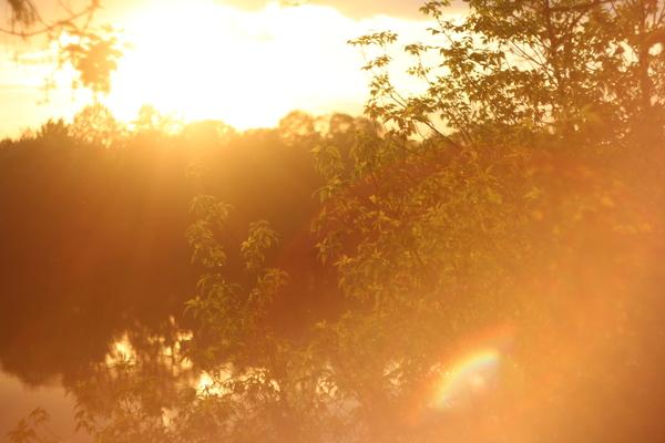Закати лося закат, пейзаж, canon, гелиос 44-2
