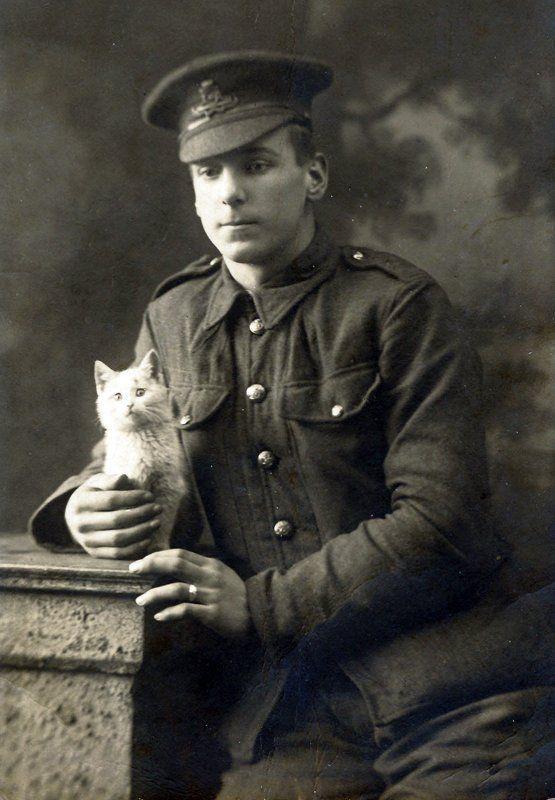 Котейка времен Первой мировой войны