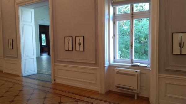 Отличный отзыв на современное искусство фотография, Современное искусство, выставка, отзыв, длиннопост