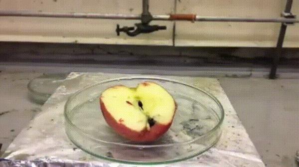 Яблоко и серная кислота