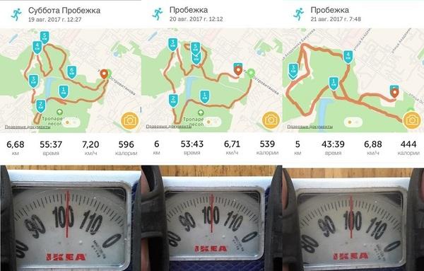Похудение: день 6,7,8 вес 99,5 кг. ActionBlog, Похудение, спорт