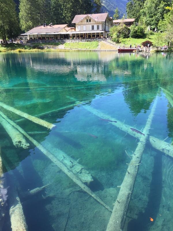 Blausee- чистейшее озеро в Швейцарии швейцария, Озеро, лето, Blausee, гифка, длиннопост