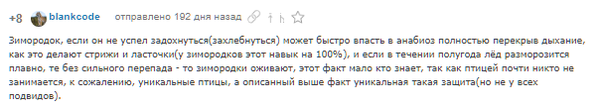 Самый старый пикабушник: @blankcode - пост ответ, часть 0 дед, пикабушники, смена парадигм, длиннопост