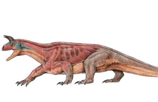Рогатый архозавроморф предвосхитил появление цератопсов палеоновости, палеонтология, эволюция, наука, Копипаста