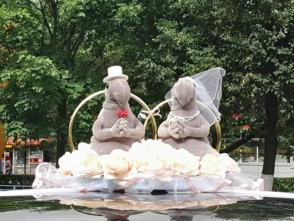 Дождались таки)) Свадьба, Ждун