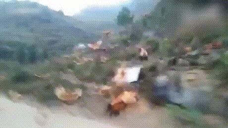 Атака летающих куриц